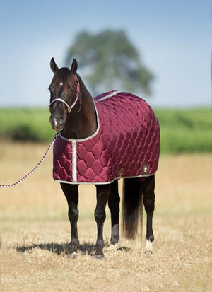 420 denier closed front design / 275 g. fill Offered in a western cut suitable for stable use Blanket liner polishes coat Includes a belly surcingle Attached web leg straps