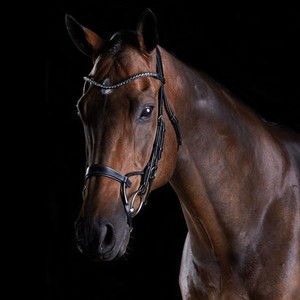 Made of fine European leather Anatomically shaped headpiece Gorgeous crystal accented browband