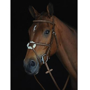 Made of German Leather Ergonomic headpiece with sheepskin padding Rubber reins included
