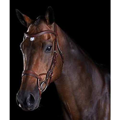 Made of high quality European leather Anatomically shaped headpiece evenly distributes pressure across the poll. Ergonomically designed noseband alleviates pressure to the upper jaw and molar teeth