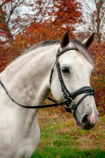 Uniquely shaped and tapered noseband Gorgeous clear crystal and silver beaded browband Made of the finest Grade A English leather
