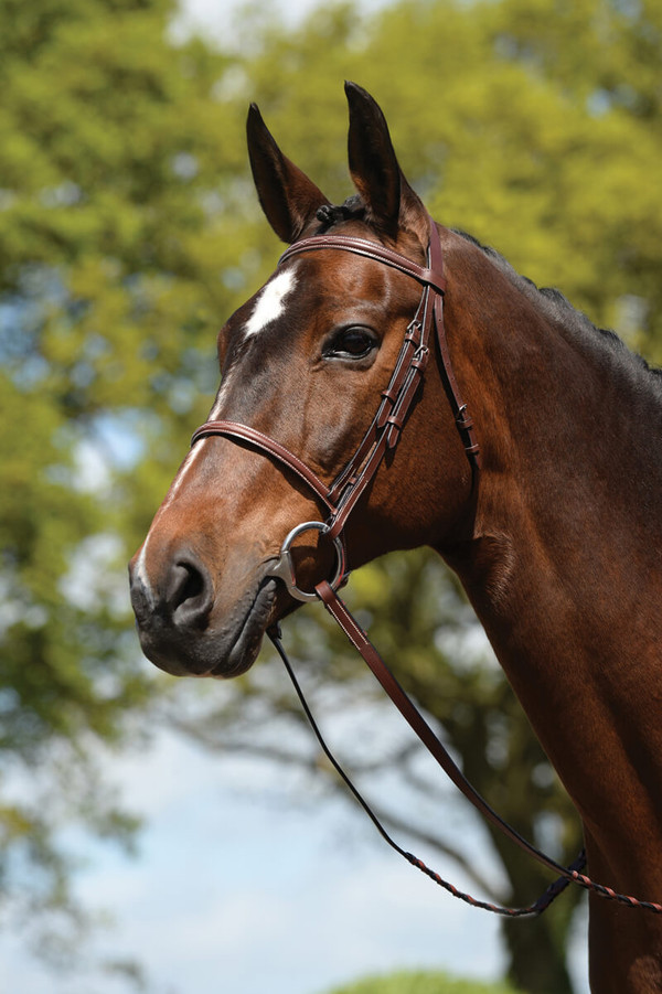 """Features a comfort crown with padding Matching fancy stitched 54"""" reins An economical choice"""