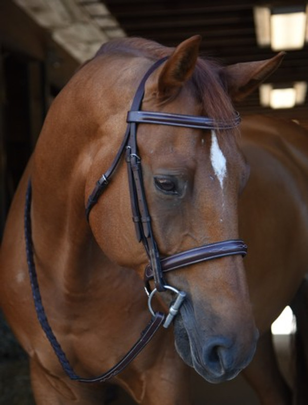 Economical yet timeless look of more expensive bridles Unpadded round raised fancy stitched noseband Fancy stitched with round raised laced reins