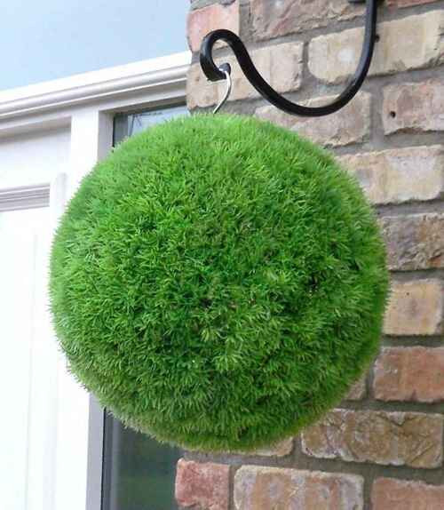 Topiary moss, or Sphagnum, is fun to use and will last for years.