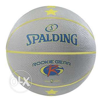 SPALDING rookie gear youth basketball [grey] - Size 5