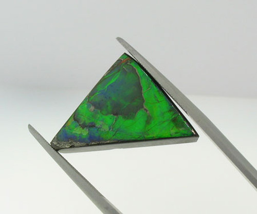 Genuine Natural Ammolite #5001