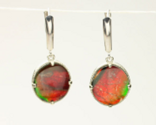 Genuine Natural Ammolite Earrings #EA-372