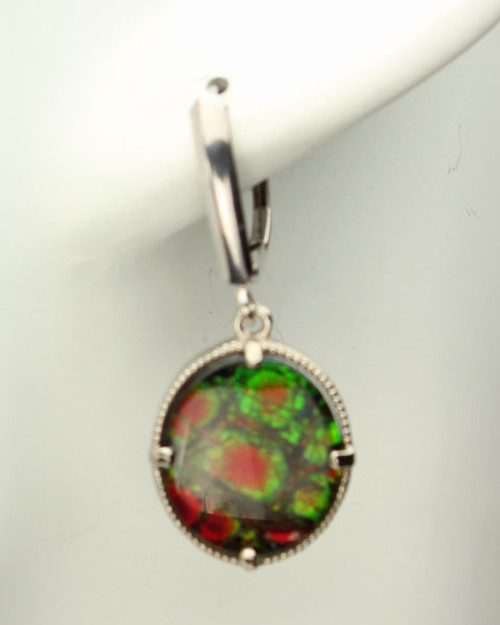 Genuine Natural Ammolite Earrings #EA-3722
