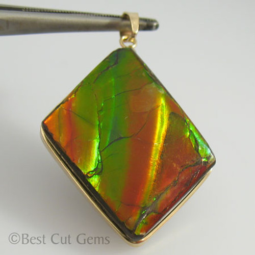 Genuine Natural Ammolite Pendant #5032