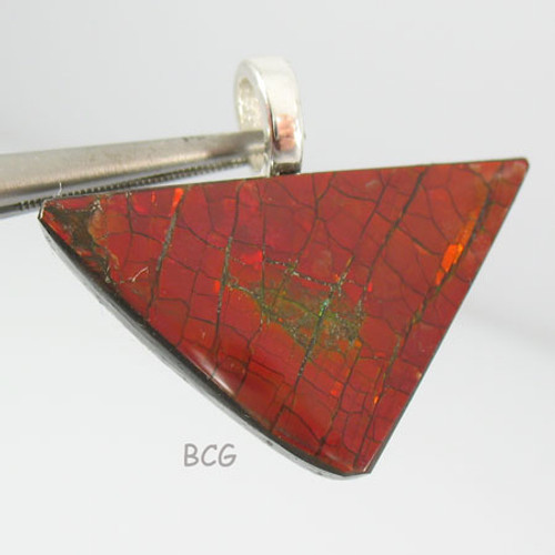 Genuine Natural Ammolite Pendant #1648
