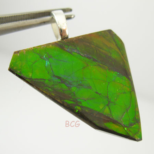 Genuine Natural Ammolite Pendant #1650