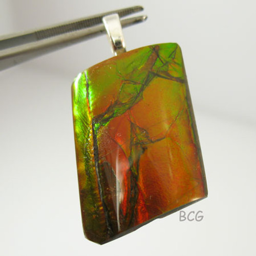 Genuine Natural Ammolite Pendant #1652