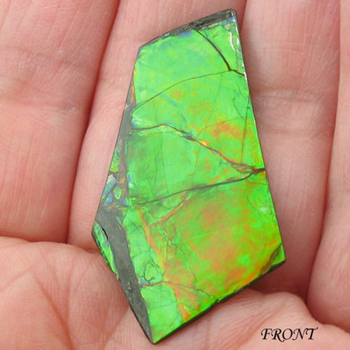 An ultra rare double-sided Ammolite #IT-840