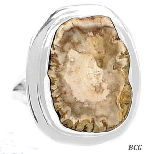 Petrified Wood Silver Ring #RI-1097