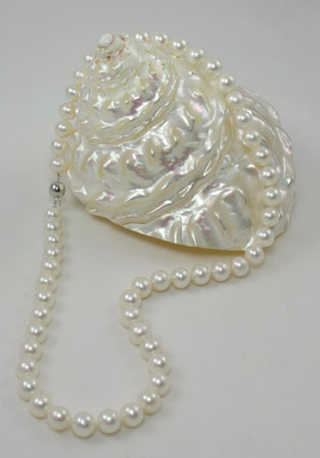 White Akoya Pearl Strand Necklace