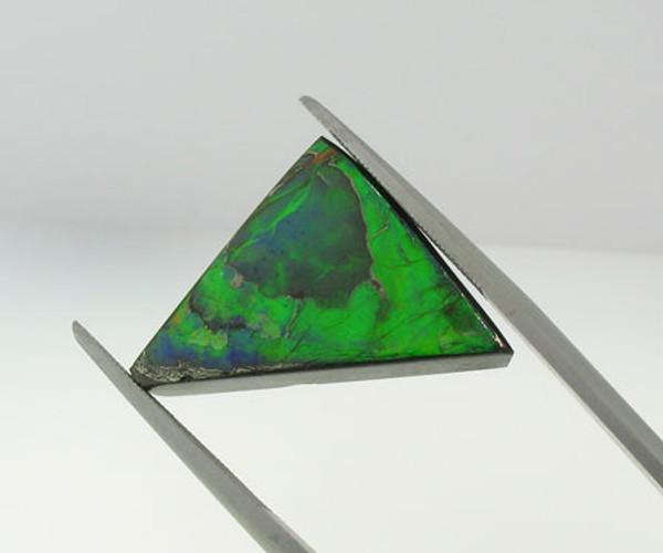 Genuine Natural Ammolite #5001