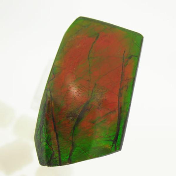Ammolite #IT-1055