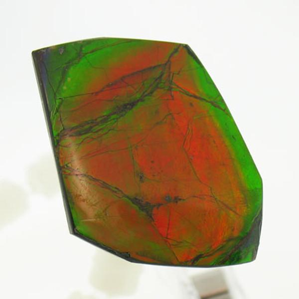 Ammolite #IT-1056