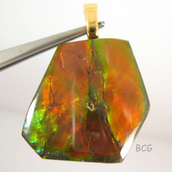 Genuine Natural Ammolite Pendant #1654