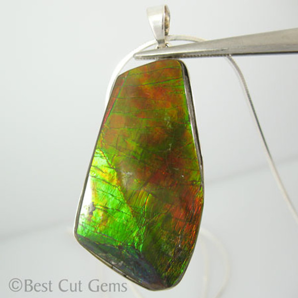 Genuine Natural Ammolite Necklace #5033