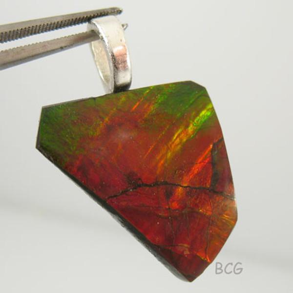 Genuine Natural Ammolite Pendant #1651