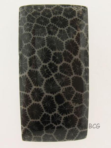 Black Coral Cabochon #IT-1718