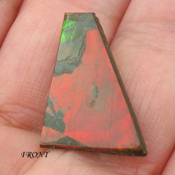 Rare Double Sided Ammolite #IT-842