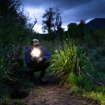 The Flashlight Mount