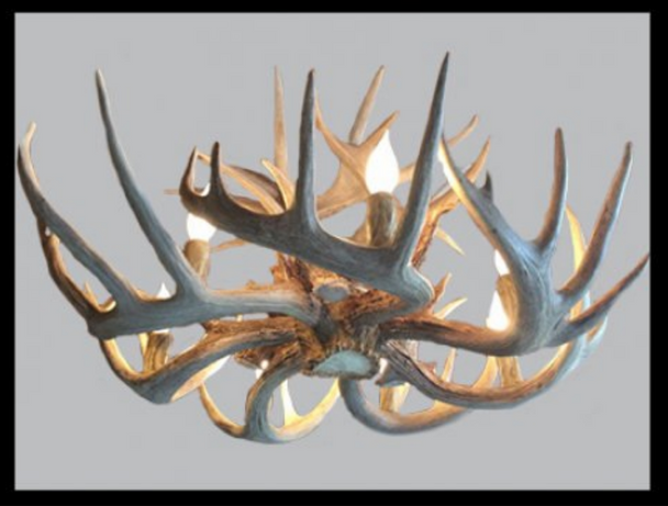 Wild Rose Deer Antler Chandelier