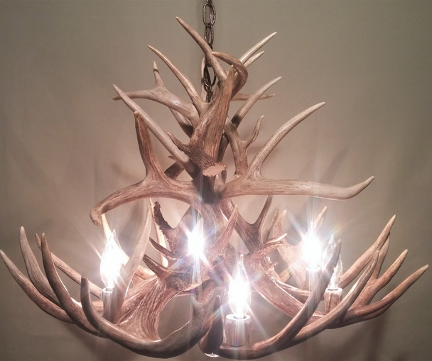 "Maryland Deer Antler Chandelier, 28"" W x 20"" T, 6 Lights, DL"