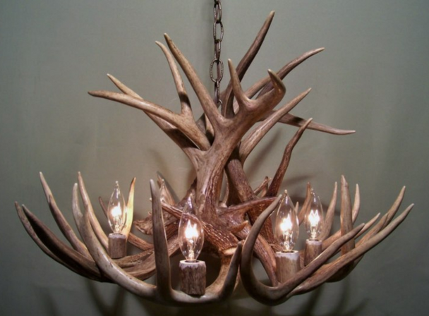 "Mississippi Deer Antler Chandelier, 26"" W x 16"" T, 6 Lights"