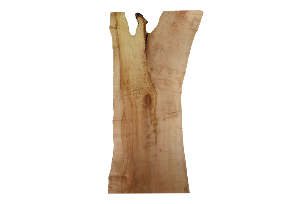 Back-side of Maple Live Edge Slab #382.