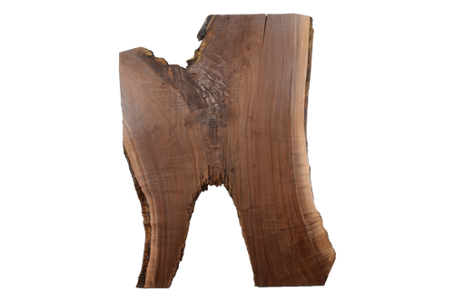 Back-side of Walnut Live Edge Slab #397.