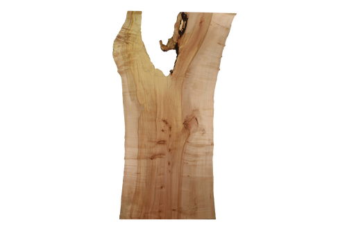 Back-side of Maple Live Edge Slab #385.