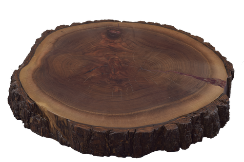 Walnut Live Edge Round #479