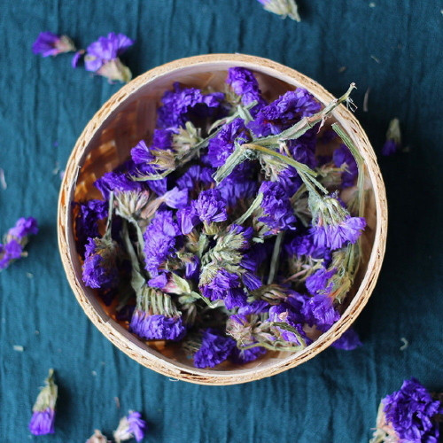 Forget-me-not  500g