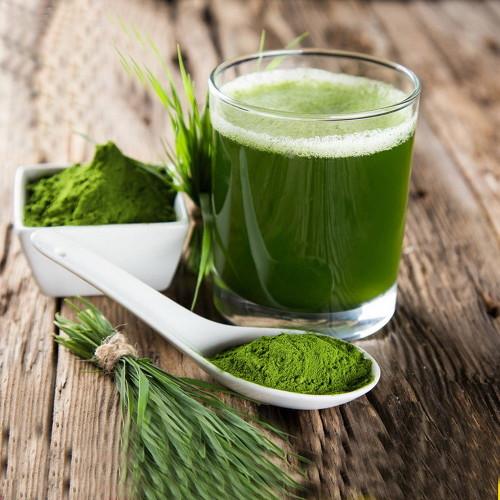 Certified Organic Premium Pure Barley Grass Juice Powder Bio Natural Superfood 500g