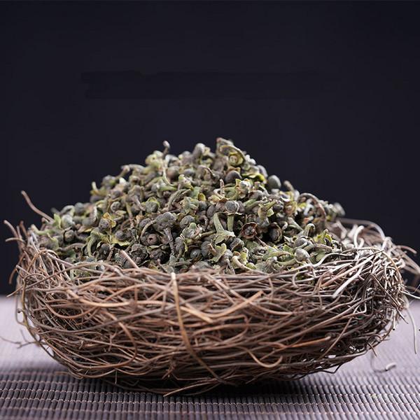 Organic Wild White Tea Camellia Sinensis Seeds 500g