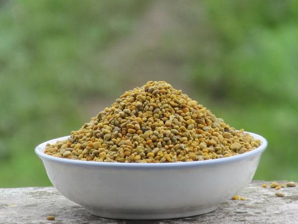 Organic Natural Wild Motherwort Leonurus Cardiaca Honeybee Honey Bee Pollen 500g