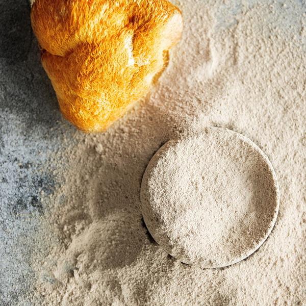 Organic Lion's Mane Mushroom Powder Powdered Bearded Tooth Hericium Erinaceus 500g