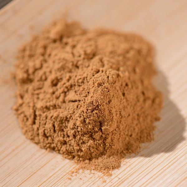 Organic Wild Chaga Mushroom Inonotus Obliquus Extract Powder 50:1 Concentration 500g