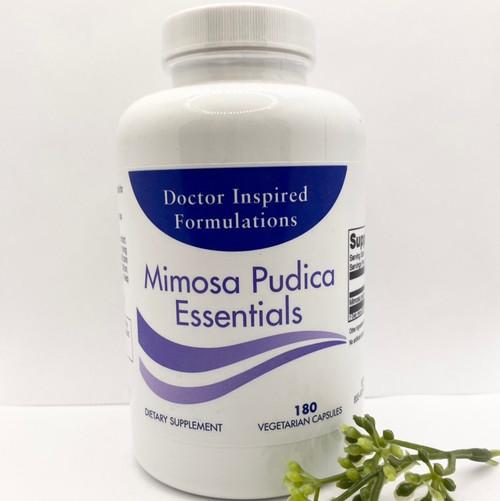 Mimosa Pudica qty180