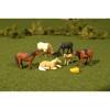 BAC33169  O Horses (6)