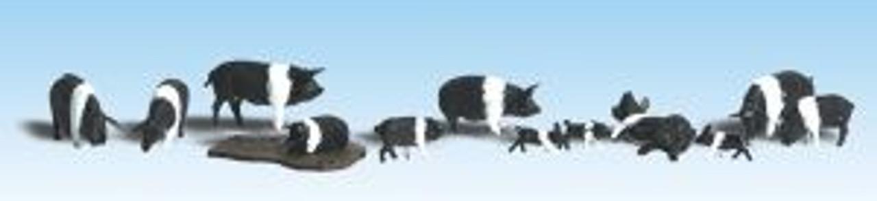 A1864 Hampshire Pigs HO