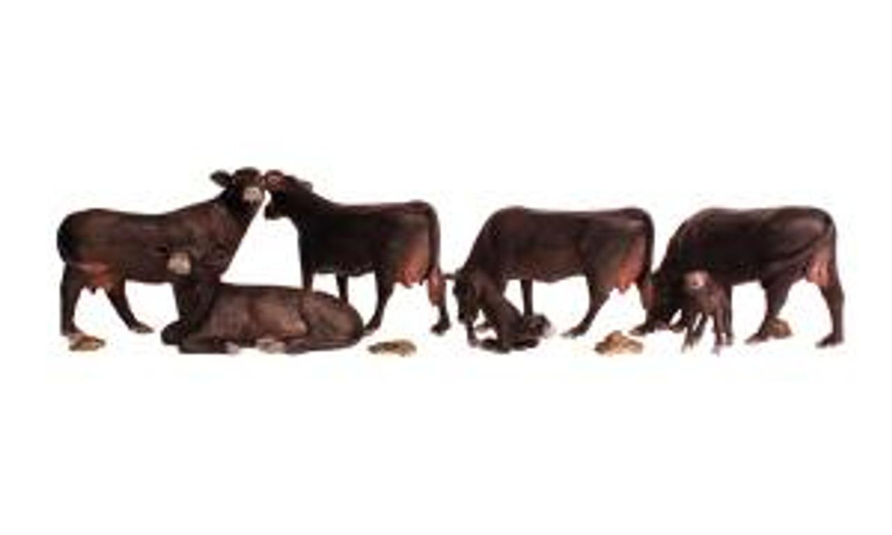 A1955 Black Angus Cows HO