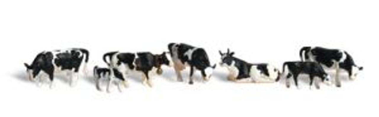 A2724 Holstein Cows O