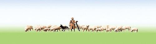 W272-158051  Shepherd & Sheep