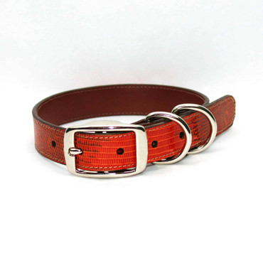 Genuine Lizard Dog Collar - Orange
