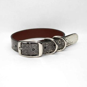 Genuine Lizard Dog Collar - Natural
