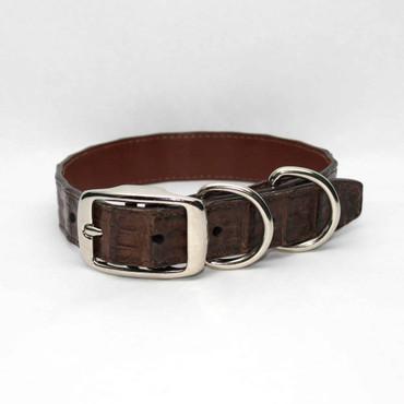 Genuine Caiman Dog Collar - Brown